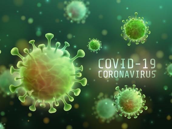 Coronavirus and the Courts